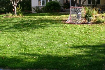 SumaGreen Lawns 039