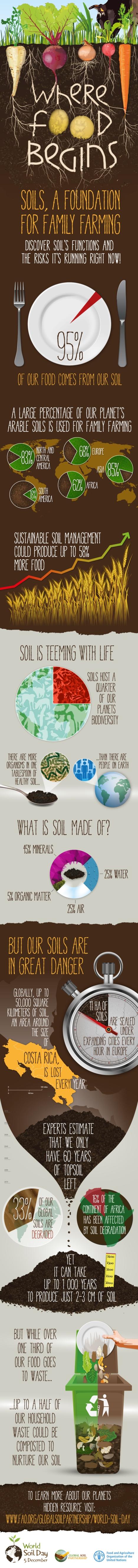 infographics_en